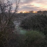 Udsigten i frostvejr